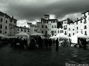 lucca piazza2